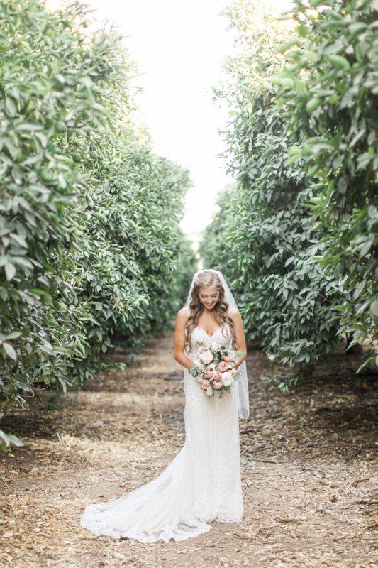 Wedding Dress photo inspiration